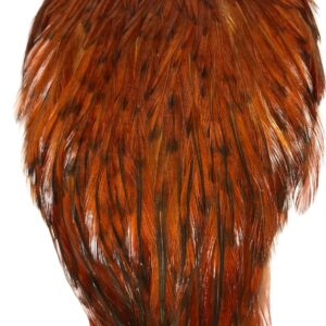 Rooster Capes Nature